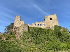 Blick auf die Burgruine Frauenstein